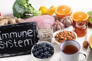 Probiotics – The Immune System Booster