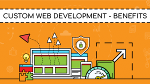 Advantages of Custom Web Application Development
