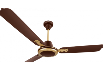 A close - up of a ceiling fan Description automatically generated with medium confidence
